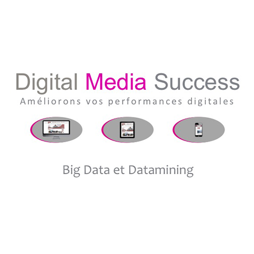 digital media success